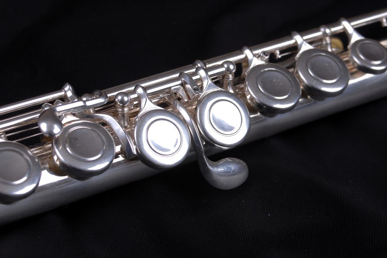 Učitel příčné a zobcové flétny