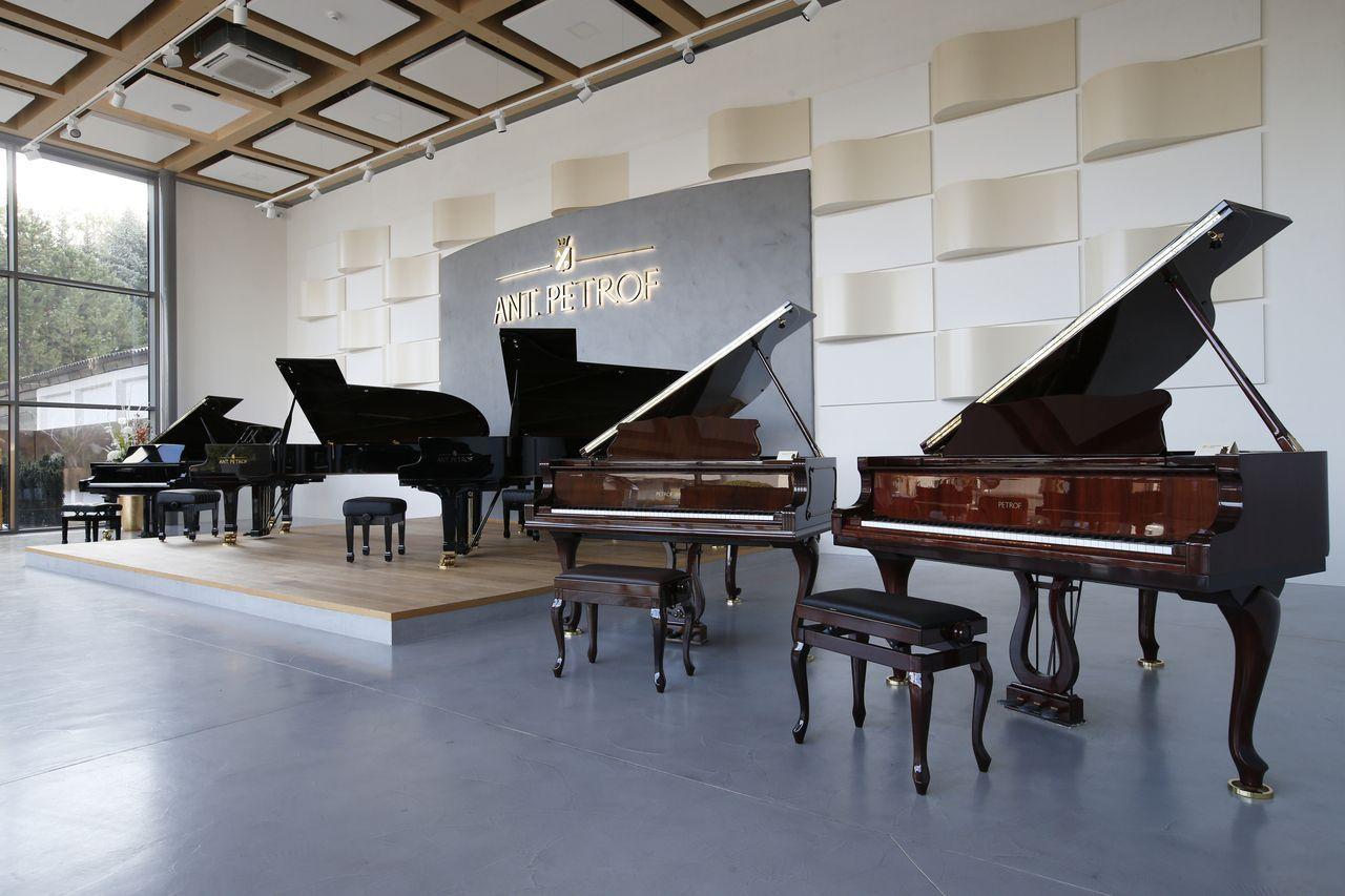 """Grant """"Piana do škol"""""""